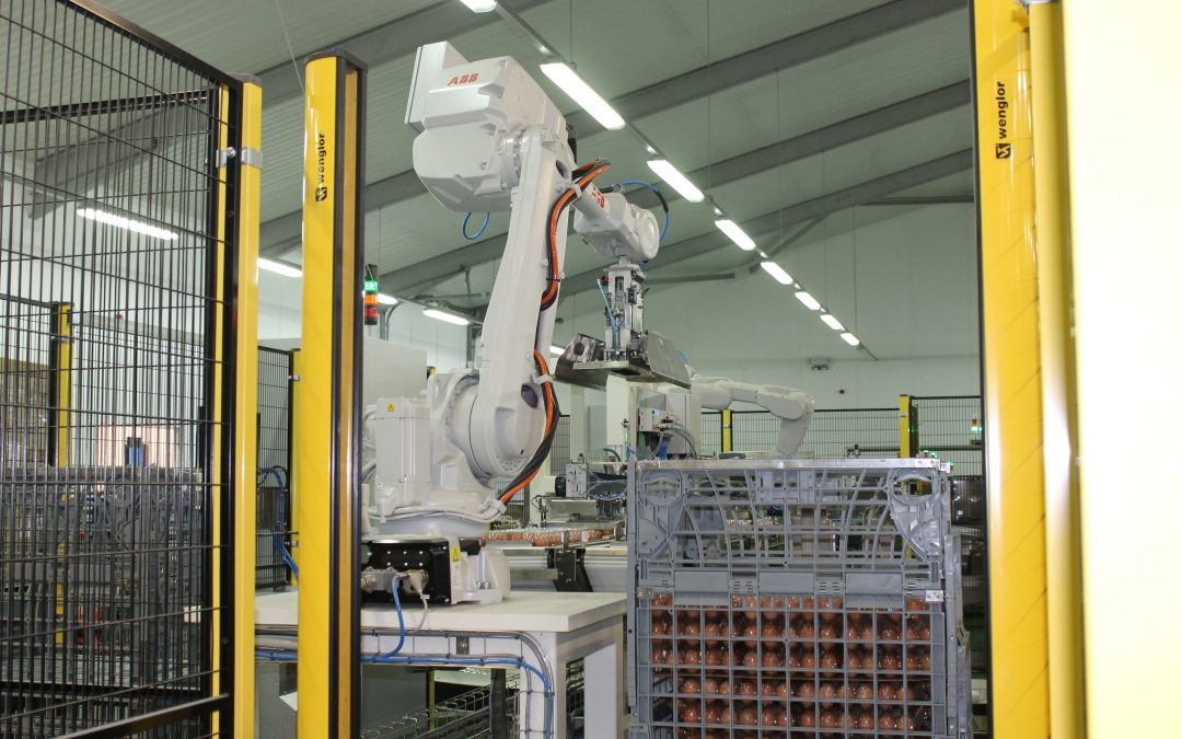 CKF utilises the latest in robot palletising technology to safely pack fresh egg cases