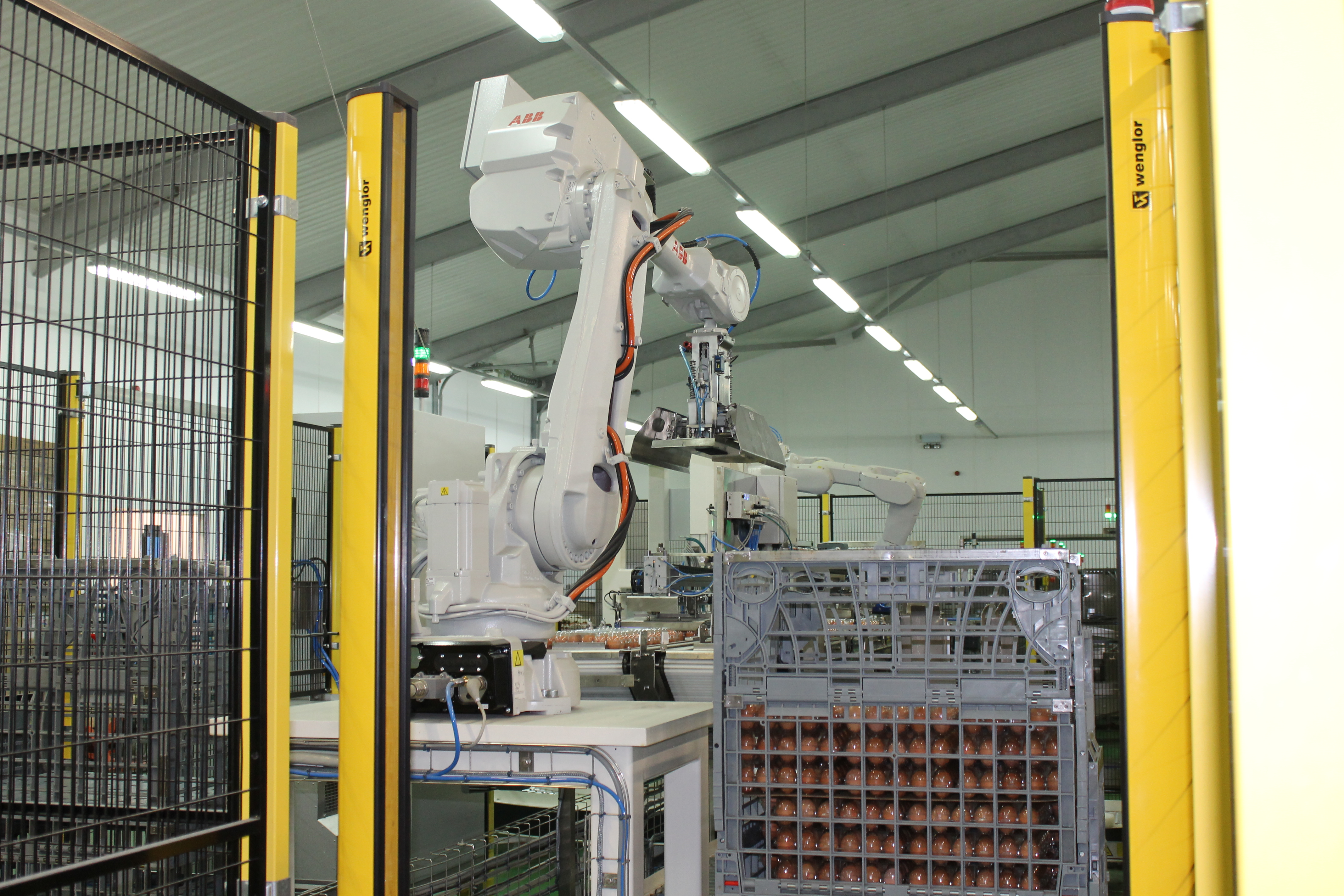 CKF utilises the latest in robot palletising technology to safely pack fresh egg cases